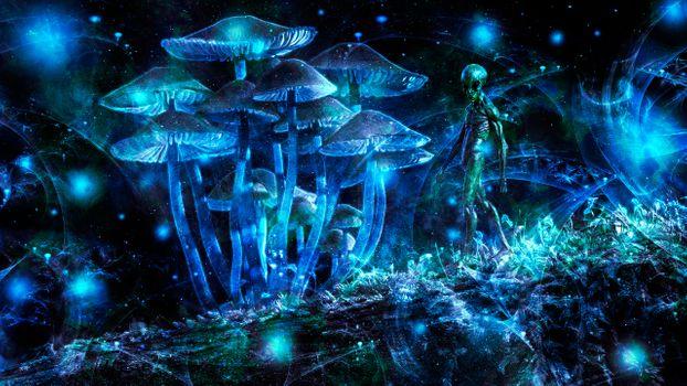 Бесплатные фото Рендеринг,отрисовка,визуализация,wallpapers,гуманоид,грибы