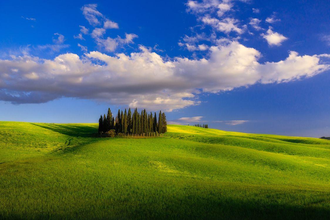 Фото бесплатно Тоскана, поля, холмы - на рабочий стол
