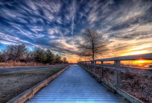 Фото бесплатно Silver Sands State Park, закат, дорога, забор, деревянный настил, деревья, пейзаж