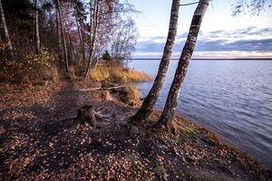 Бесплатные фото На берегу Учинского озера,Московская область,Россия,осень,закат,Учинское озеро,пейзаж