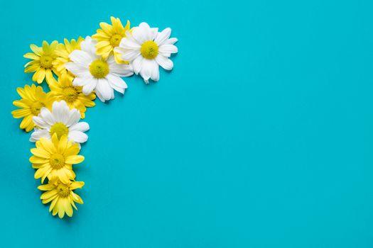 Фото бесплатно фон, цветы, ромашки