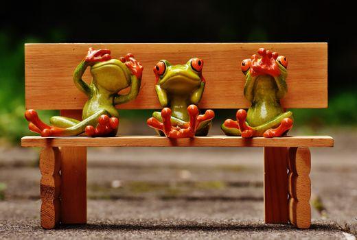 Photo free wood, bench, cute