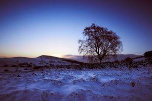 Бесплатные фото зима,закат,поле,деревья,холмы,пейзаж