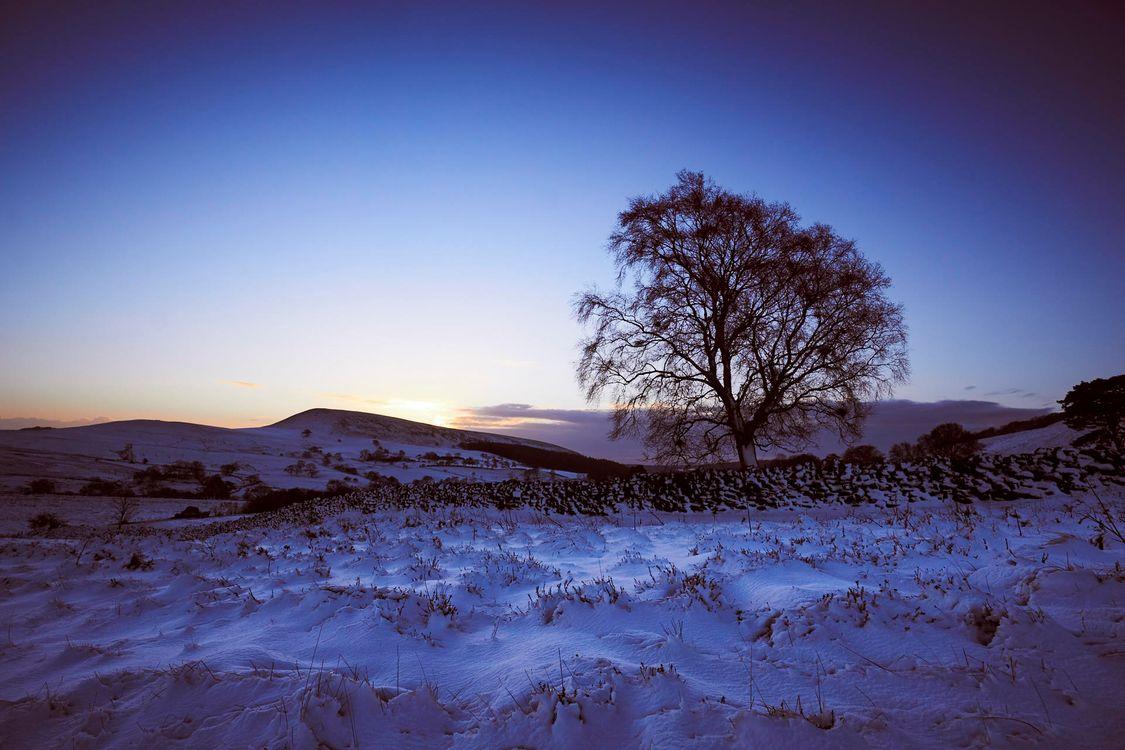 Фото бесплатно зима, закат, поле, деревья, холмы, пейзаж, пейзажи