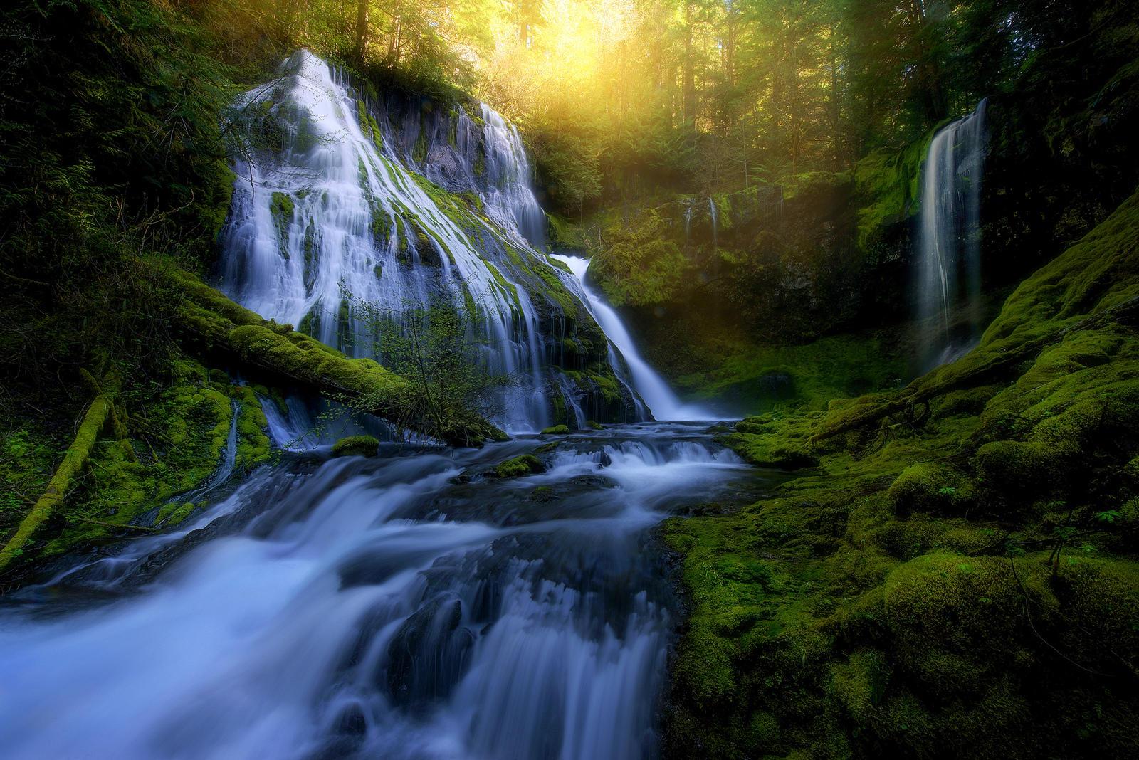 Обои лес, деревья, водопад, река