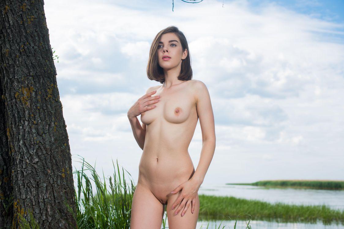 Фото бесплатно Dakota A, красотка, голая, голая девушка, обнаженная девушка, позы, поза, сексуальная девушка, модель, эротика, эротика