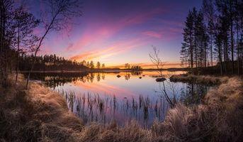 Фото бесплатно Финляндия, лес, озеро