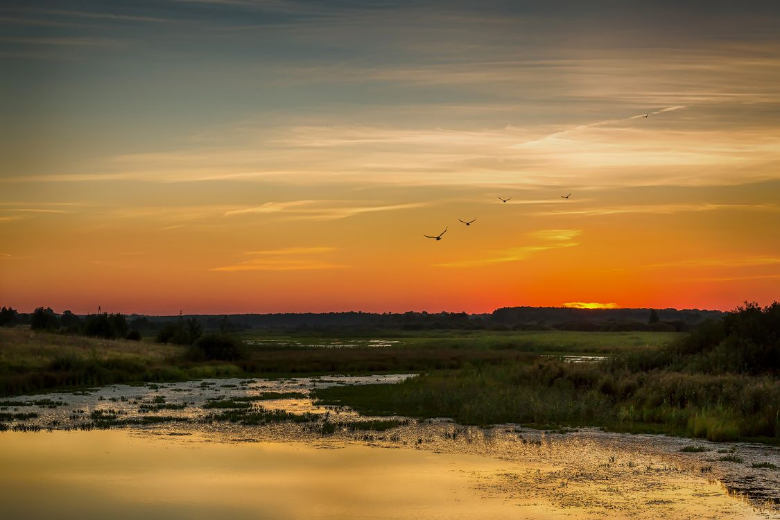 Озеро на закате · бесплатное фото