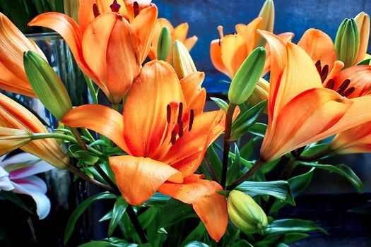 Photo free lilies, bouquets, flowers