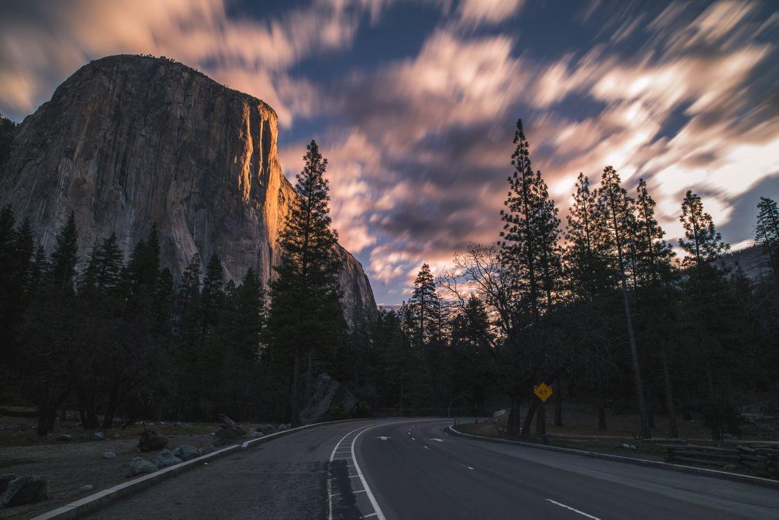 Photos for free turn, trees, rocks - to the desktop