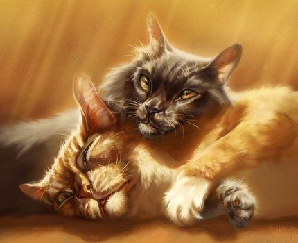 Фото бесплатно кошки, кот и кошка, рисунок