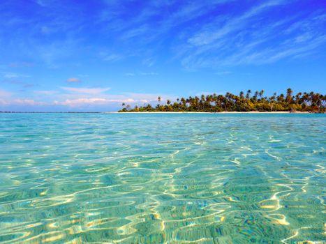Заставка море, тропики на телефон