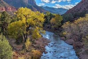 Заставки Virgin River, Zion National Park, горы
