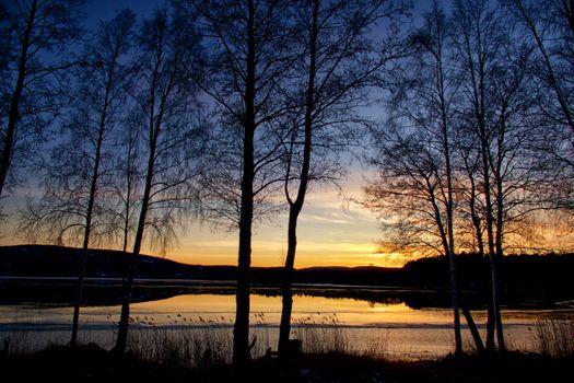 Заставки Kramfors, силуэты, деревья