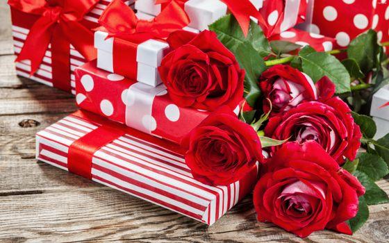 Photo free holiday, buds, valentine s day