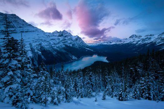 Photo free Peyto lake, Alberta, landscape