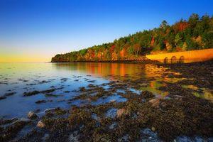 Фото бесплатно Петля парка, Мэн Национальный парк Акадия, Остров Маунт-Десерт