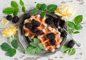 Photo free waffles, blackberries, berries