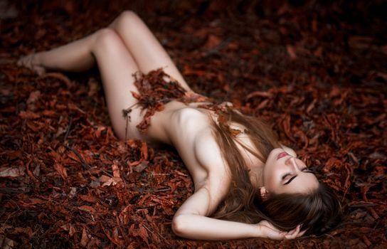 Фото бесплатно Inga, сексуальная девушка, сексуальная