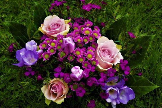 Фото бесплатно букеты тюльпанов, роза, цветы
