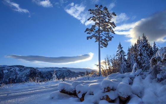 Заставки зима, бревна, снег