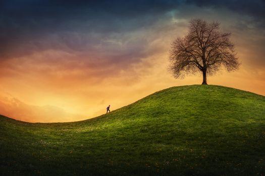 Photo free people, field, sunset