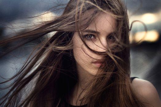 Фото бесплатно шатенка, модель, ветер