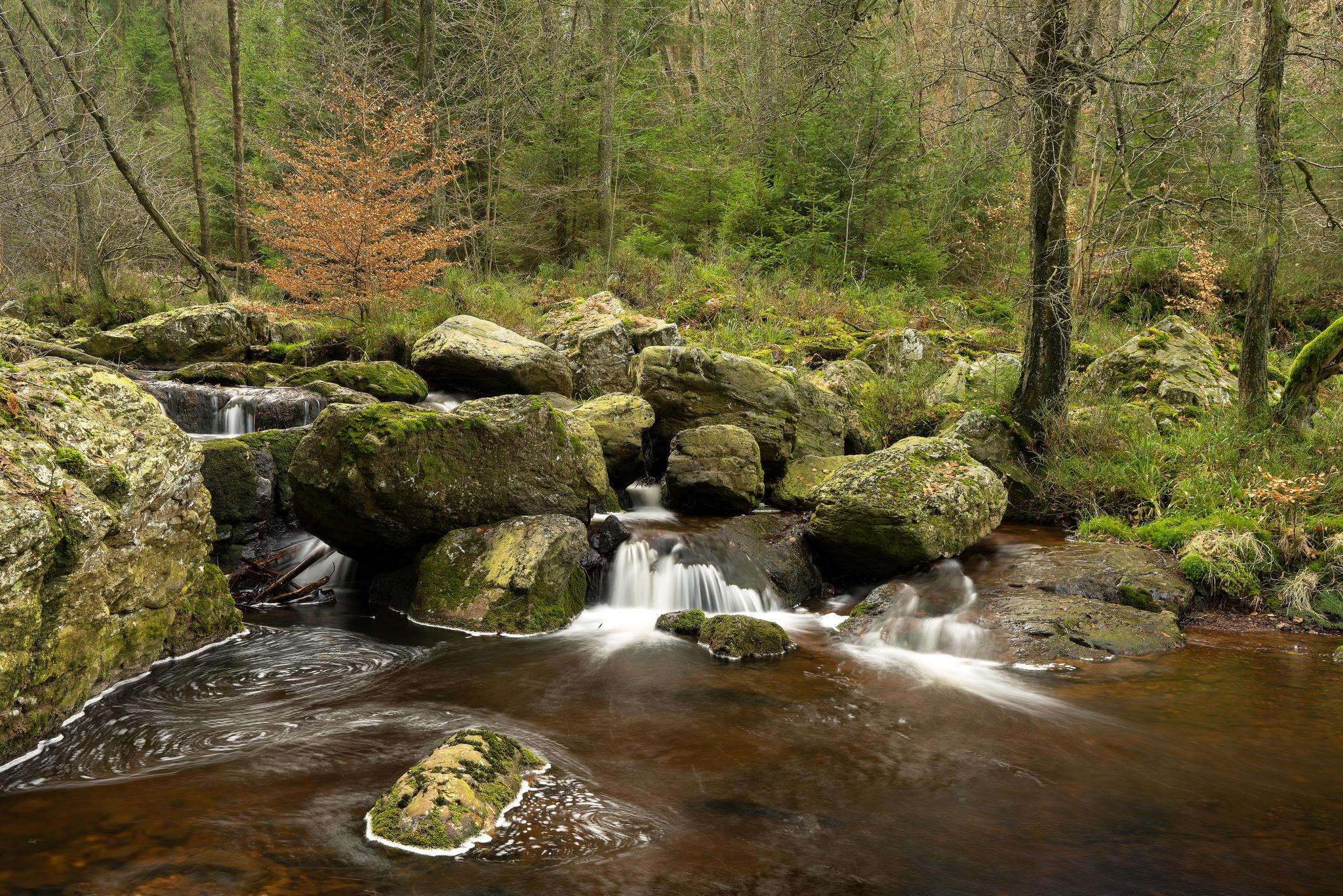 Обои лес, деревья, река, водопад