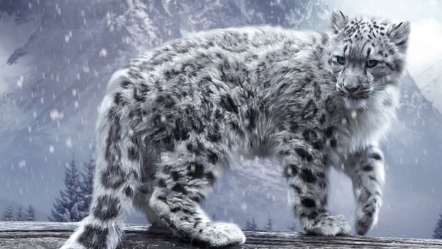 Заставки леопард, снег, зима