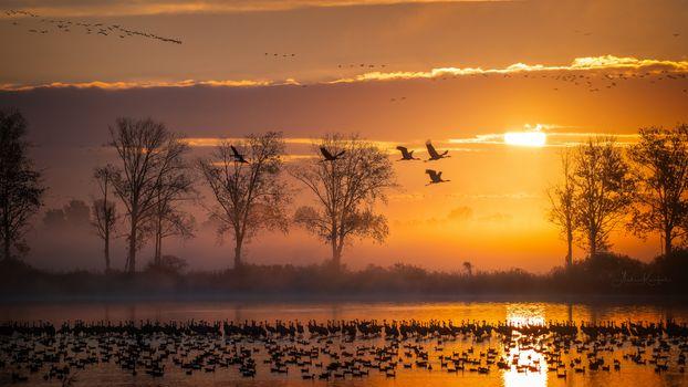 Фото бесплатно Нюте-Урштромталь, Германия, закат
