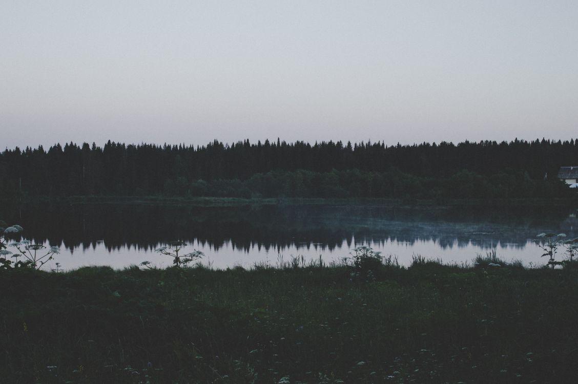 Озеро в лесу · бесплатное фото