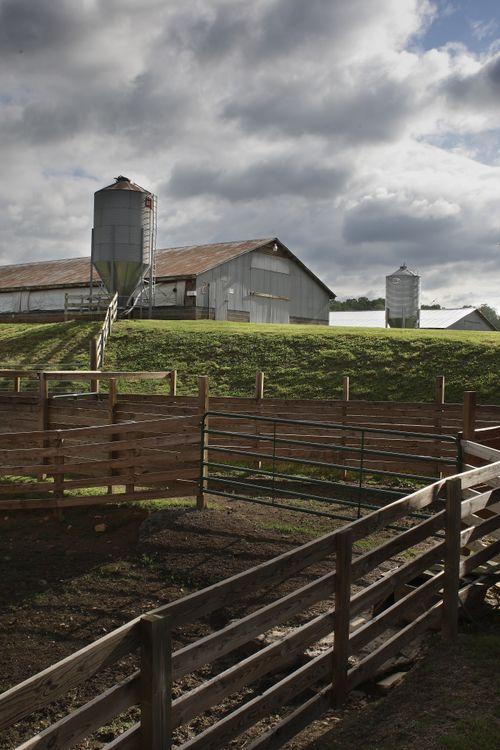 Фото забор сельское хозяйство растения - бесплатные картинки на Fonwall
