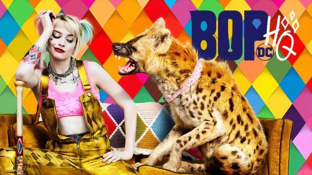 Photo free movies, Harley Quinn, hyena