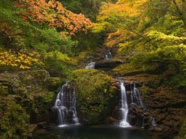Фото бесплатно осень, лес, деревья, скалы, водопад, природа