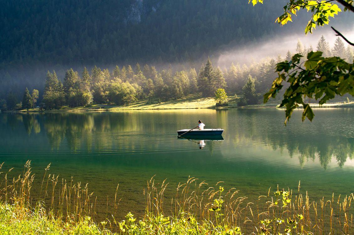 Обои молчание, воды, размышления, природа, озеро, зеленый, водное пространство, пустыня, лист, утро, резервуар, дерево, банка, небо, loch на телефон | картинки пейзажи