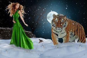Заставки зима,ночь,луна,девушка,незнакомка,тигр,снег