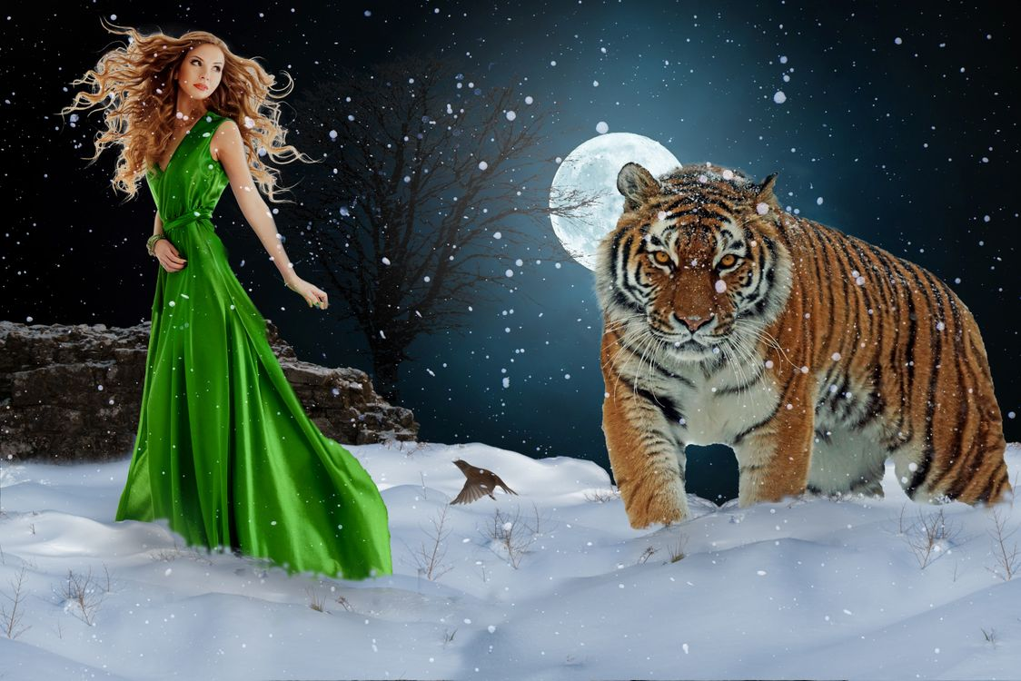 Фото бесплатно зима, ночь, луна, девушка, незнакомка, тигр, снег, art, фотошоп, фантазия, рендеринг