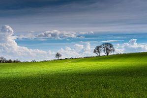 Бесплатные фото поле,холм,деревья,небо,облака,пейзаж