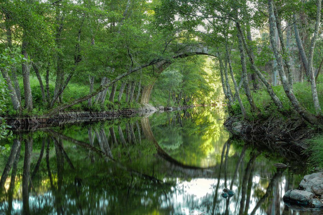 Фото бесплатно Римская мостовая арка, Пеналва-ду-Каштелу, Визеу, Португалия, пейзажи