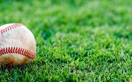 Photo free baseball, sport, lawn