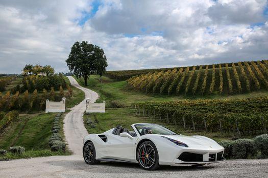Photo free Ferrari 488 Spider, white, cars