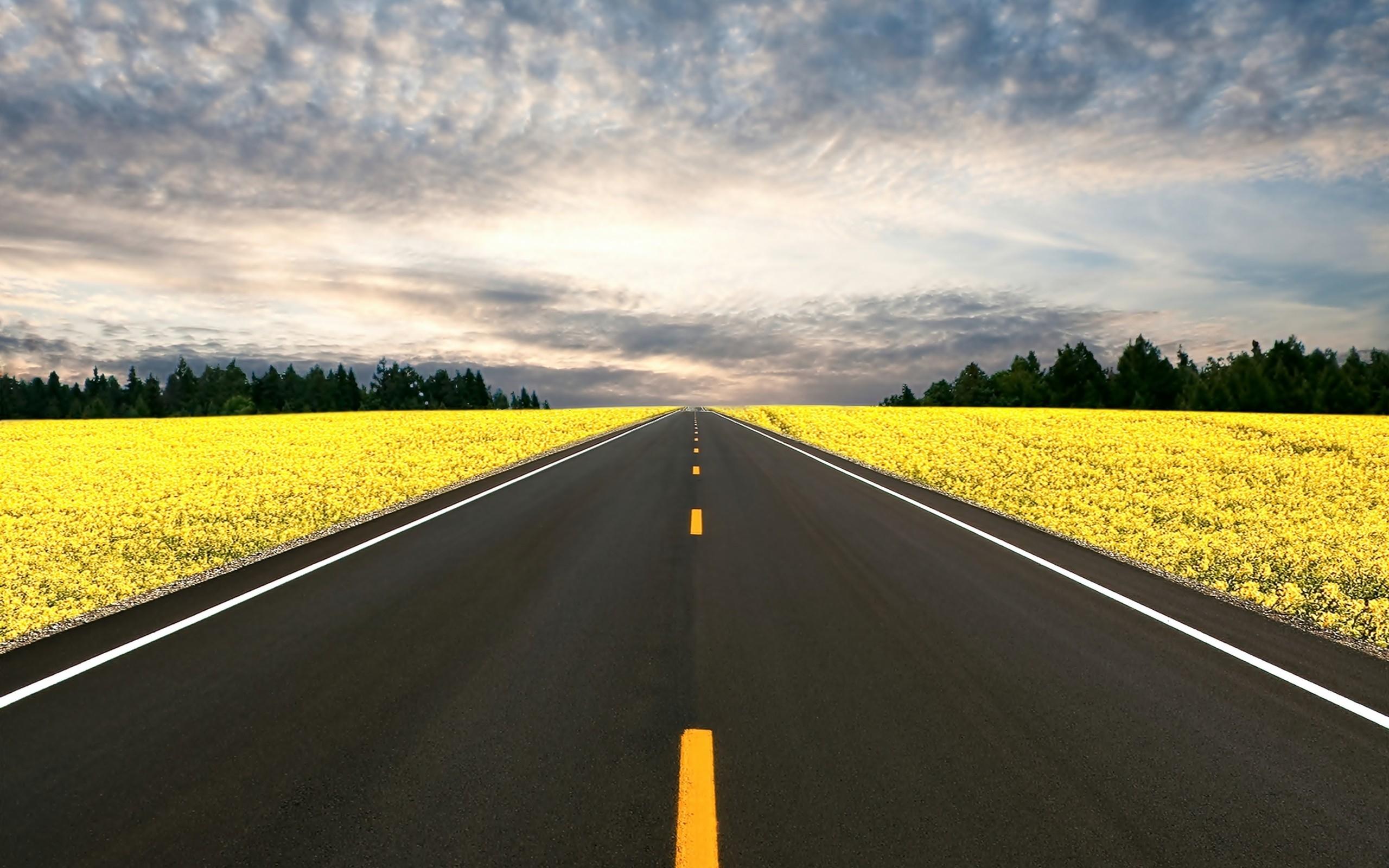 чистые красивые дороги фото забавные