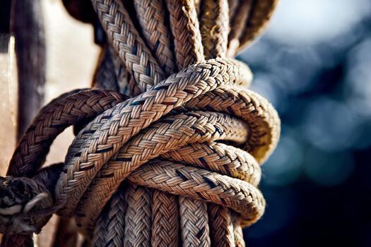 Фото бесплатно море, ветвь, веревка