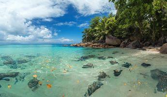 Фото бесплатно остров, берег, пляж