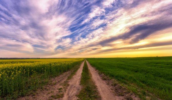 Фото бесплатно деревня, дорога, закат