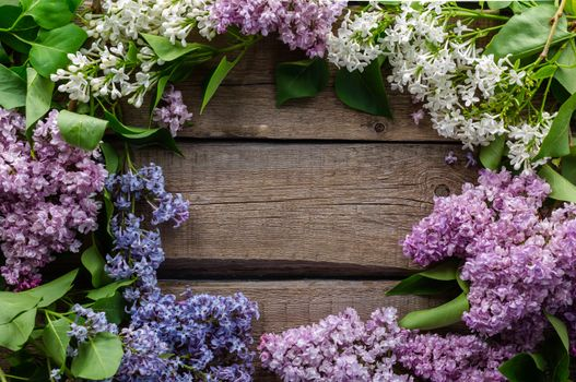 Photo free flower, spring, lilac