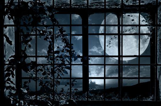 Заставки Луна, птицы, мрак