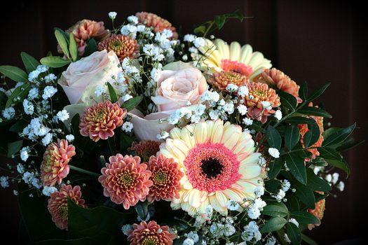 Фото бесплатно букет, цветок, цветы