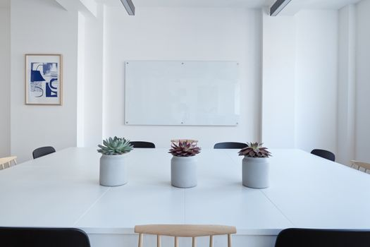 Заставки кактус, офис, горшки