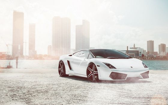 Photo free Lamborghini Gallardo, white, long drives